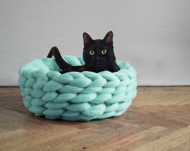 pet - Este tricô gigante era tudo o que você precisava para ser mais feliz hoje