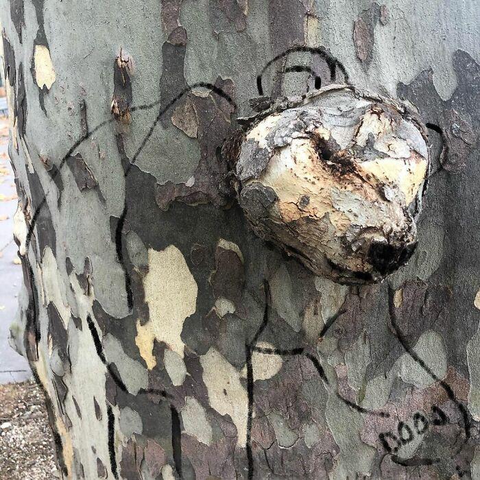 11 5fbb7d99c4532 700 - 10 maravilhosos atos de vandalismo feito por um artista francês
