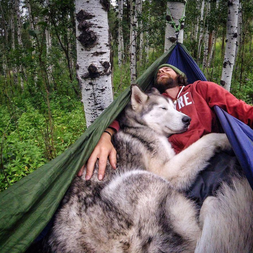 """Loki Hammock4 880 - """"Eu levo meu cão-lobo em aventuras épicas porque eu odeio ver cães presos"""""""