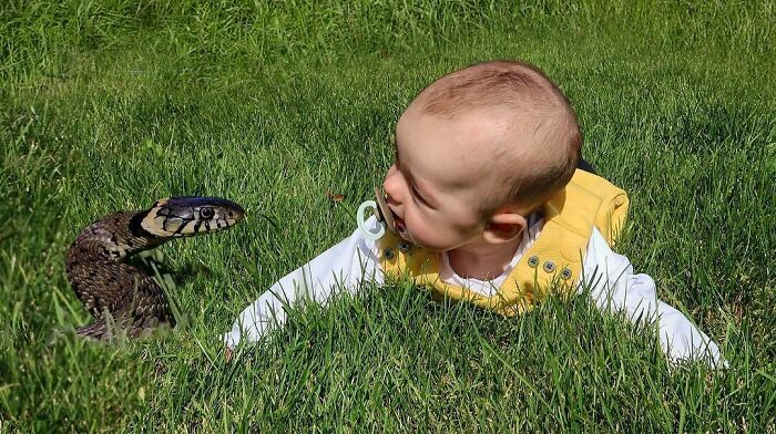 pai5 - Pai criativo manda fotos editadas para namorada sempre que ela perguntava se o bebê estava bem