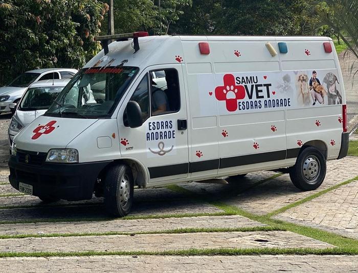 9b39b295 700 - Van que levava 70 gatos resgatados e dois voluntários é roubada em estrada