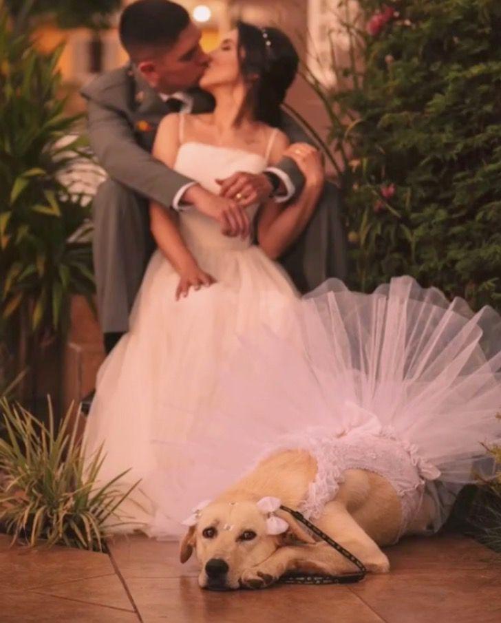 Captura de Pantalla 2020 12 03 a las 13.05.28 - Esta Golden foi dama de honra no casamento de sua mãe, posando até mesmo de mãos dadas
