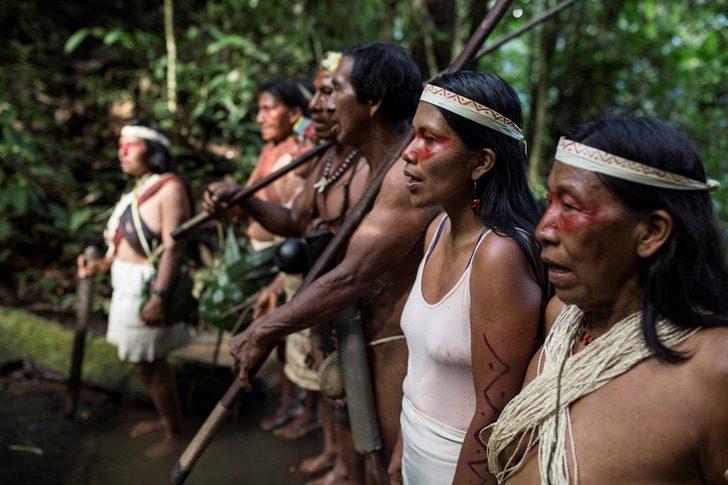 Foto 10 1536x1024 1 - Mulher indígena ganha prêmio ambiental em defesa da floresta amazônica