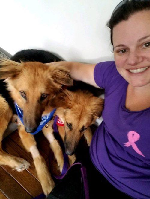 apolo adonis y su nueva madre adoptiva 500x666 1 - Cães abandonados apavorados não param de se abraçar ao perceber que seu destino é a morte certa
