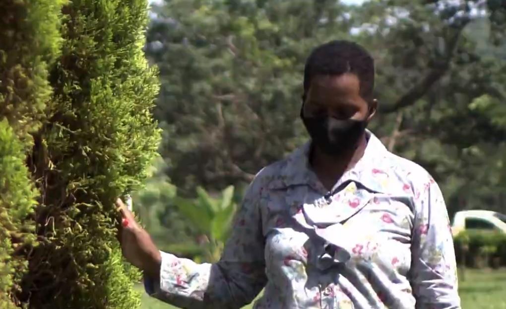 escravidao - Família que manteve mulher como escrava terá que pagar 14 anos de salários