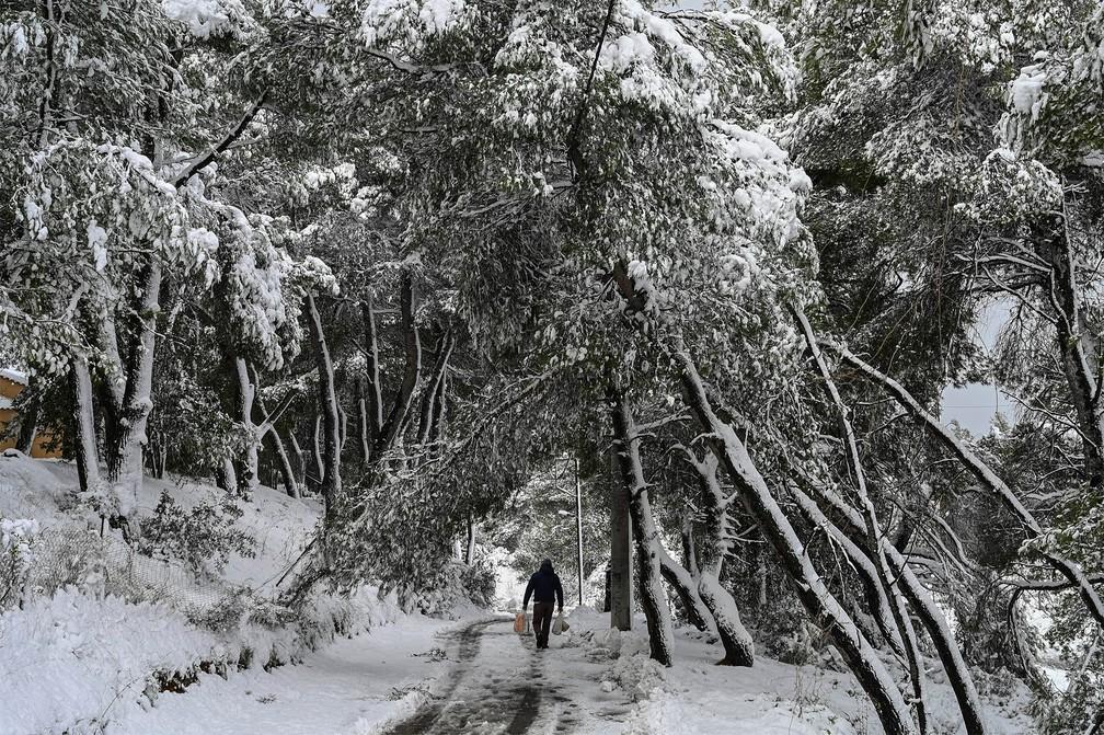 neve grecia3 - Grécia registra maior nevasca em mais de uma década e tem rara cena de Acrópole coberta por neve