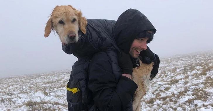 perro rescatado montaña0002 - Cachorrinha é carregada por mais de 10km quando a viram perdida em 'Não podíamos deixá-la sozinha'