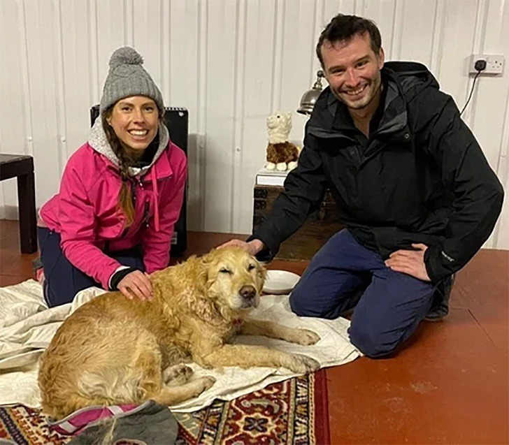 perro rescatado montaña0003 - Cachorrinha é carregada por mais de 10km quando a viram perdida em 'Não podíamos deixá-la sozinha'