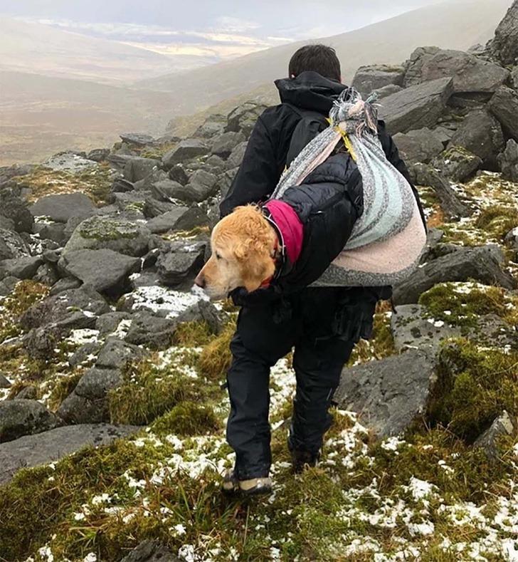 perro rescatado montaña0007 - Cachorrinha é carregada por mais de 10km quando a viram perdida em 'Não podíamos deixá-la sozinha'