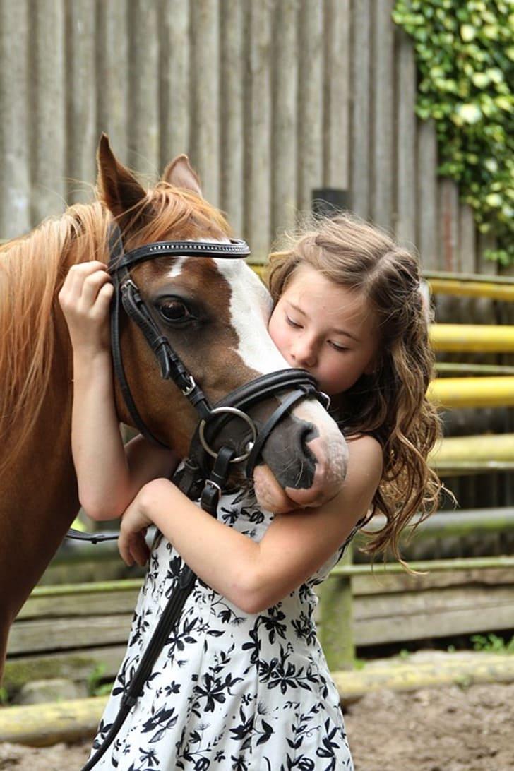 1 1 2 - Em luto, jovem chora ao lado de seu fiel amigo que faleceu - um cavalo de estimação