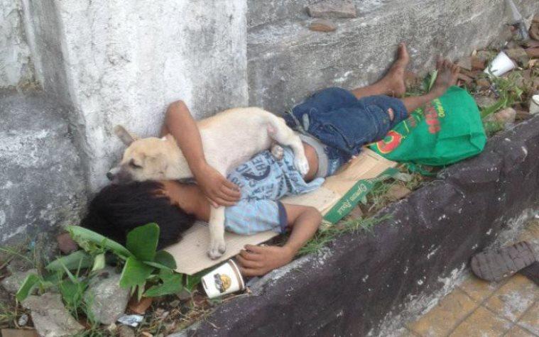 rommel1 - Menino em situação de rua faz amizade com cachorro sem-teto e decide acolhê-lo
