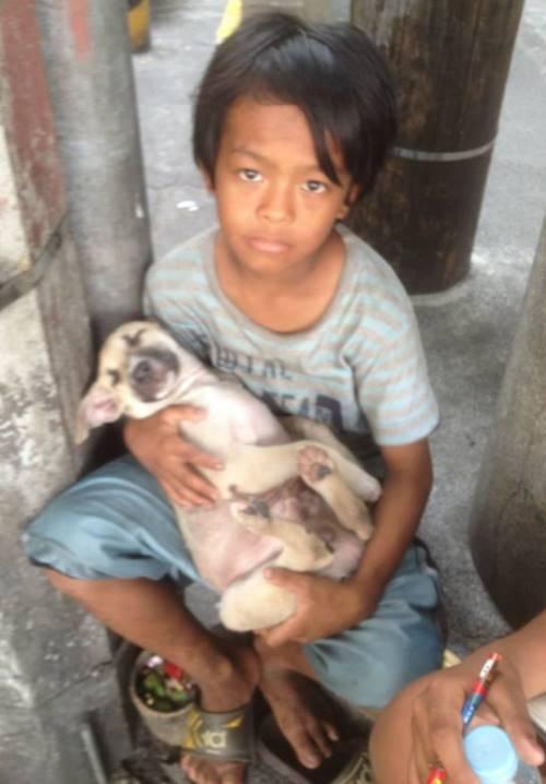 rommel4 - Menino em situação de rua faz amizade com cachorro sem-teto e decide acolhê-lo