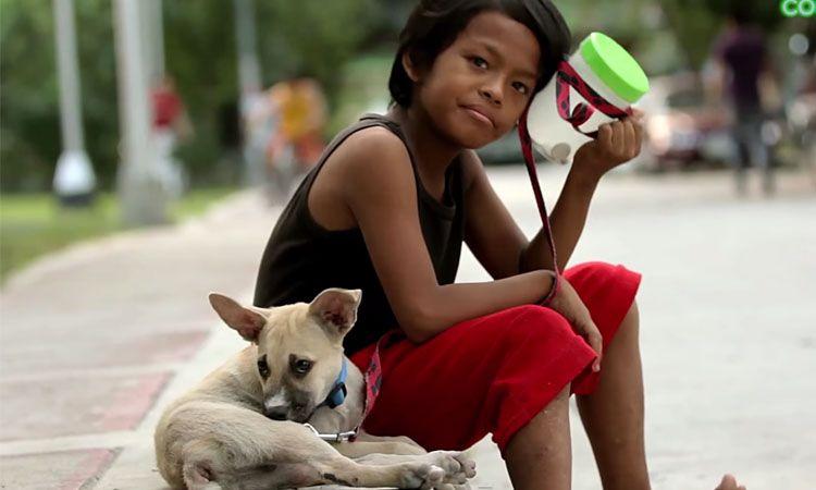 rommel5 - Menino em situação de rua faz amizade com cachorro sem-teto e decide acolhê-lo